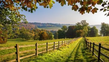 Tips for Moving to the Countryside