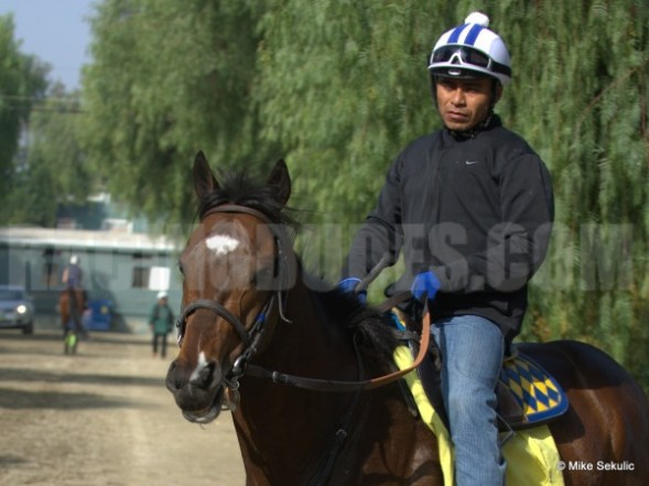 Paynter with Garcia Up