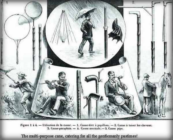 Multi-purpose Cane, Victorian Era.