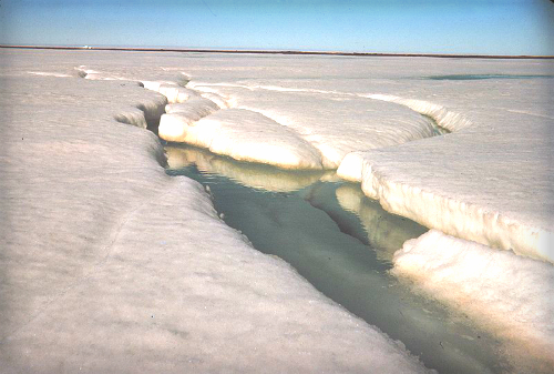 Arctic Ice Melt, 1950. Image: WIkipedia.