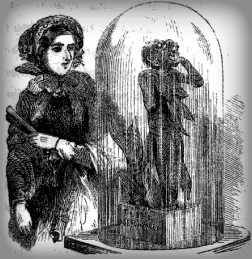 Victorian Era Mermiads: Feejee Meermaideejeemermaid_bostonmuseum_midgley_sightsinboston