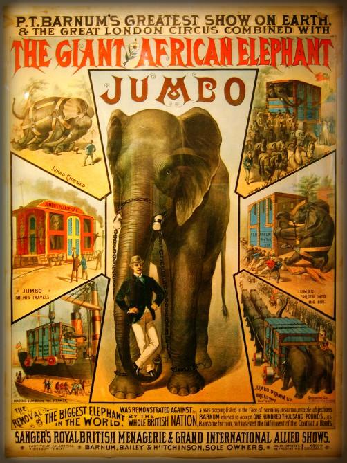P.T. Barnum's Elephants, Image: Wikipedia.
