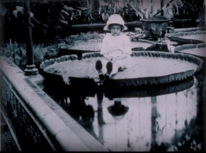 Giant Water Lily pad with small child sitting on it at Kew, 1923. Image: Wikipedia.