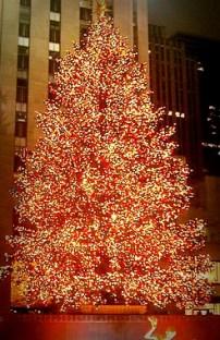 Rockefeller Center Christmas Tree. Image: Wikipedia.