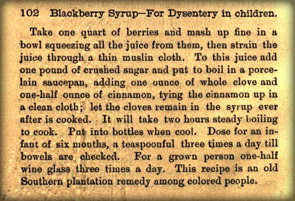 What Mrs. Fisher Knows About Old Southern Cooking, 1881. Blackberry Syrup Recipe For Children. Image: USArchive.org.