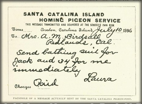 Sample Catalina Pigeon Message, 1896. Image: Islapedia.