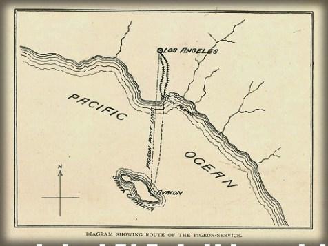 Map Catalina Island to Los Angeles c. 1890s. Image: Islapedia.