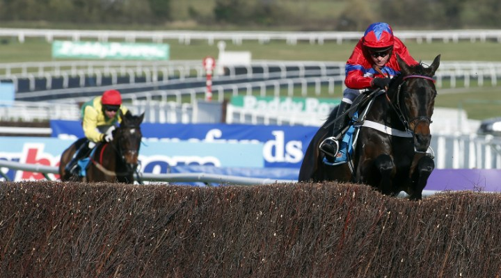Sprinter Sacre Retired & 11pts Profit Over Past Week As Jumps Season Hots Up