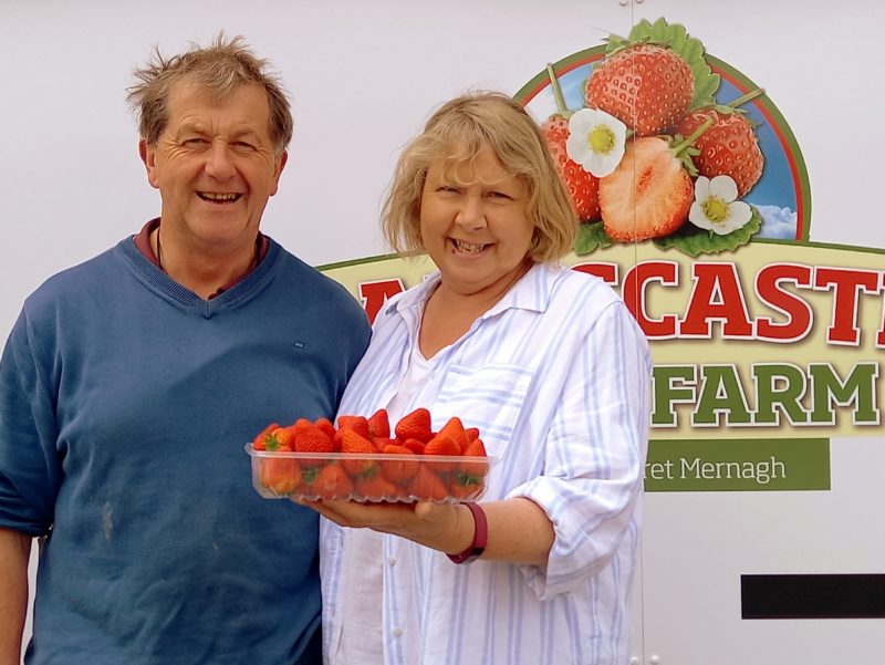 Producteurs de fraises comté de Wexford Irlande