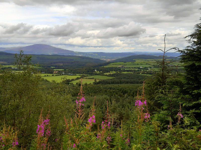 Paysage été randonnée comté de Waterford Irlande
