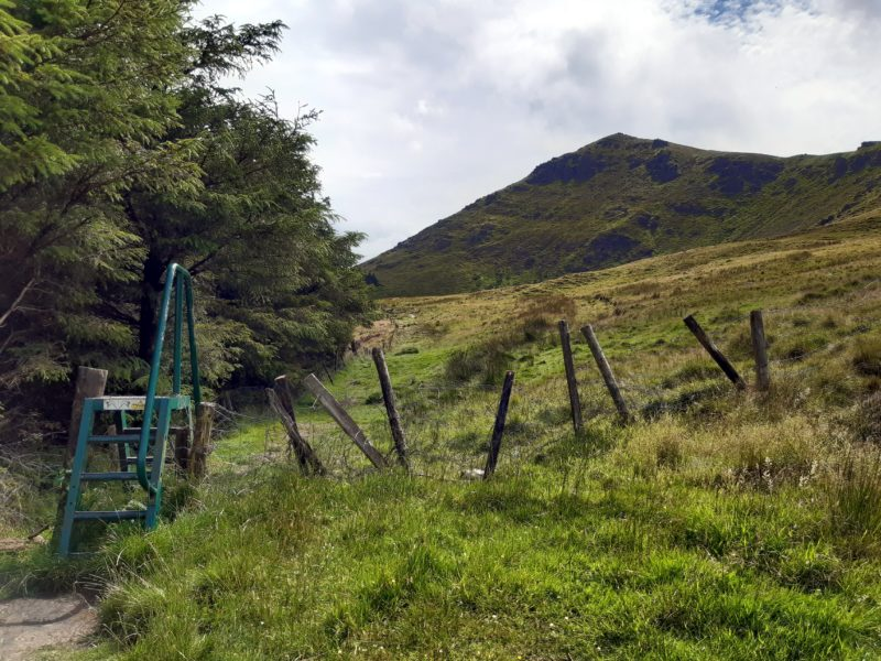 Echalier près de Lough Mohra Irlande