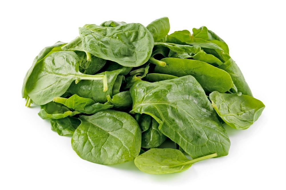 Baby leaf Spinach - Racoono
