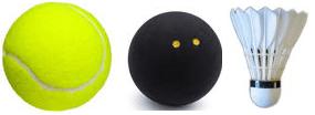 Racquet Sports Basics - Racquets, balls and birds