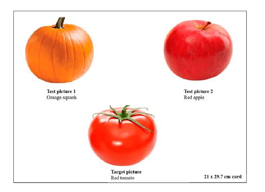 categorisatie groente