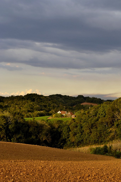 Campo Magro