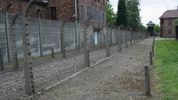Auschwitz 2014