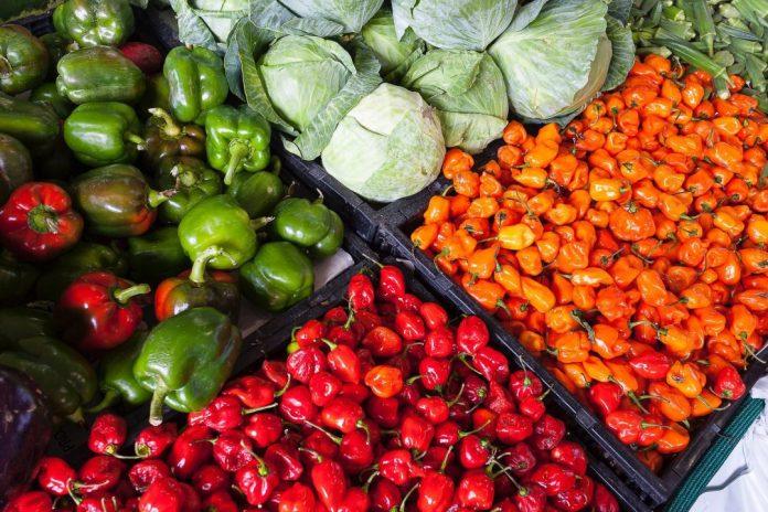 Demanda por produtos veganos favorece os planos de expansão da empresa.