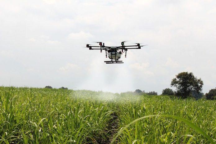 Confira as tecnologias como drones e inteligência artificial já estão impactando o campo. Foto: Pixabay