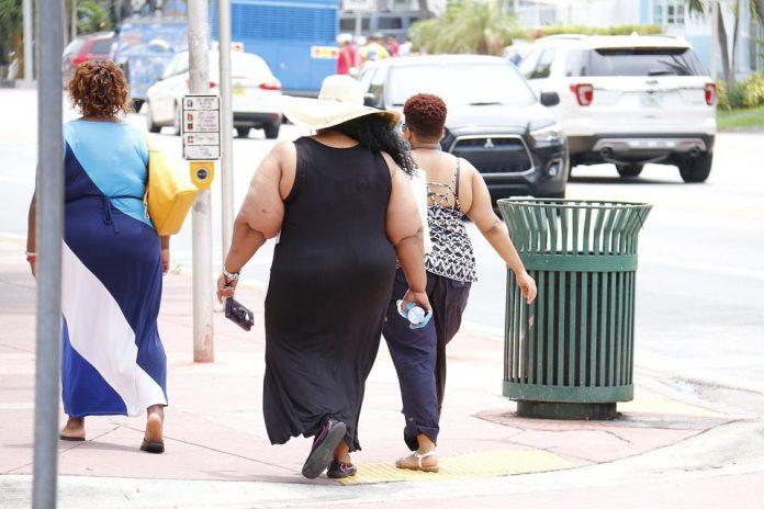 A obesidade atingia 672 milhões de adultos, 124 milhões de crianças e adolescentes (de 5 a 19 anos) e 40 milhões de crianças com menos de 5 anos. Foto: Pixabay