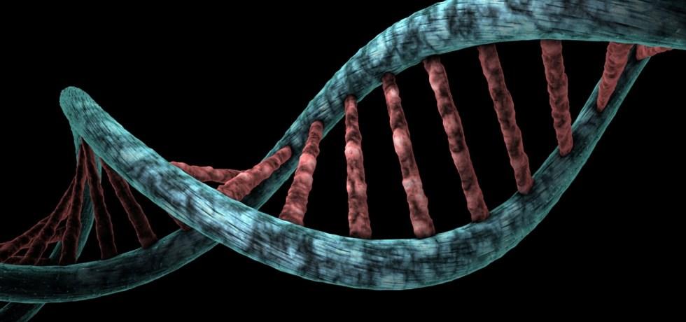 Fórum aborda medicina de precisão voltada para doenças genéticas 1