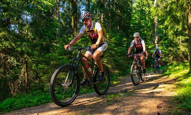 Mountainbiker auf Waldweg.