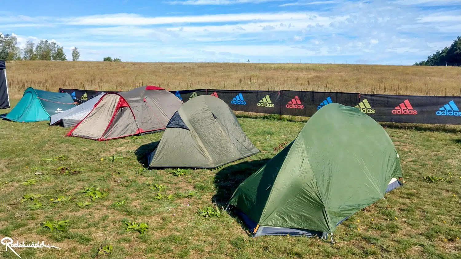 tents at a campsite