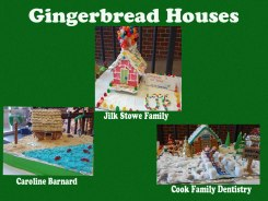 Families, art galleries, museums, and an elementary school created edible, thoughtful gingerbread-house art at the Holiday Trees & Gingerbread Houses in Kent Square' event. These three were voted best.
