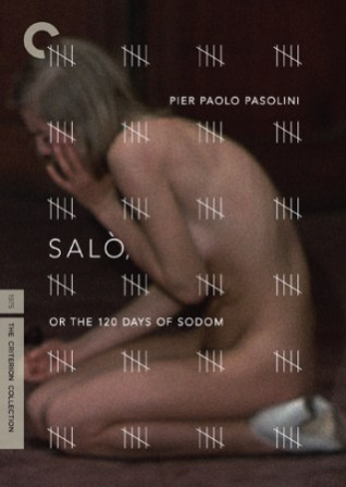 salo_criterion