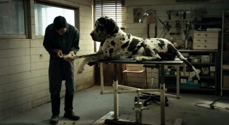 Films in London this week: DOGMAN at ArtHouse (19 to 25 OCT).