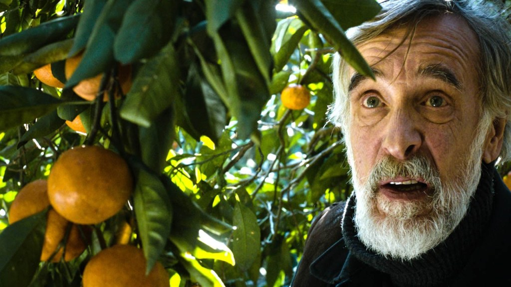 Films in London: MANDARIINID aka Tangerines at Deptford Cinema (04 MAR).