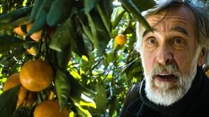 Films in London today: MANDARIINID aka Tangerines at Deptford Cinema (04 MAR).