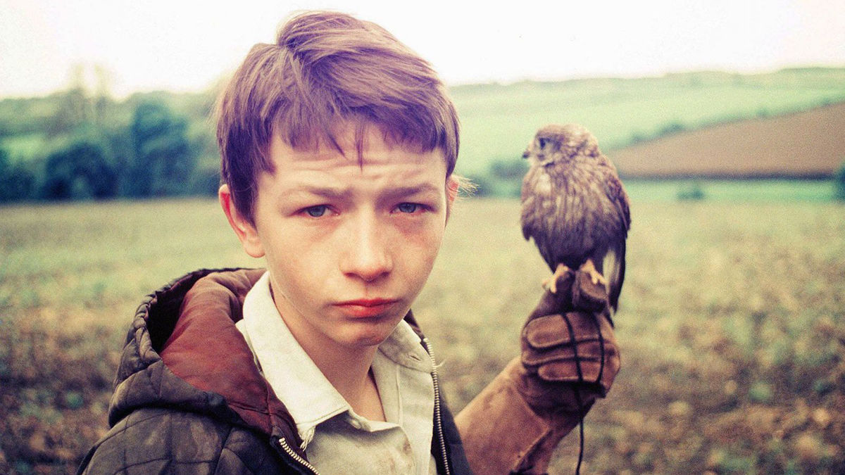 Films in London today: KES at Amnesty International (29 JAN).
