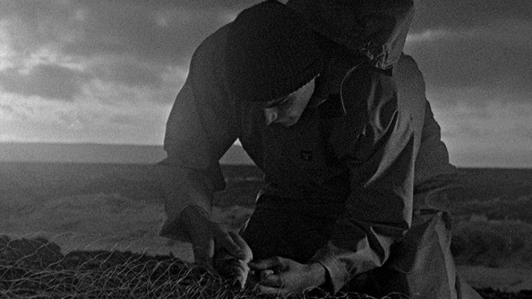Films in London today: BAIT at BFI Southbank (31 JAN to 06 FEB).