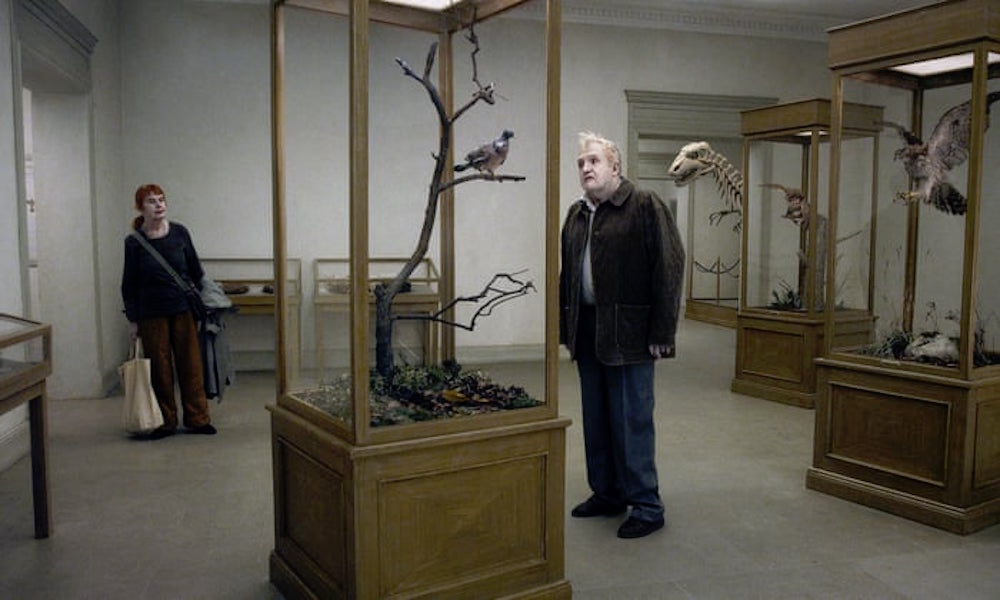 RADIANT CIRCUS featured attraction of the week: A PIGEON SAT ON A BRANCH REFLECTING ON EXISTENCE at Curzon Bloomsbury.