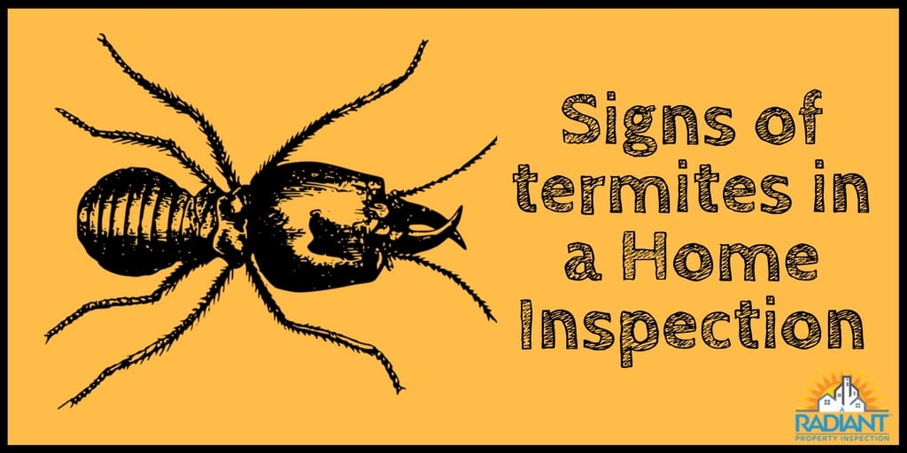 Signs of termites in a Home Inspection