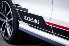 VW Polo GTI 230 - 5