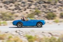 1962 Shelby 260 Cobra %22CSX 2000%22 - 26