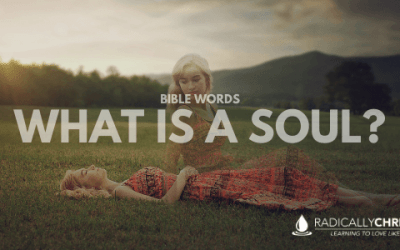 """What is a Soul? Is """"Soul"""" Different than """"Spirit""""? – Bible Words"""