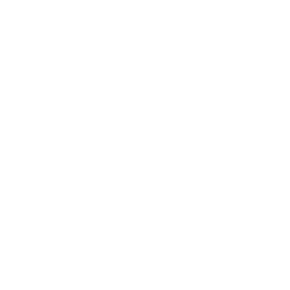 the social guild social media training