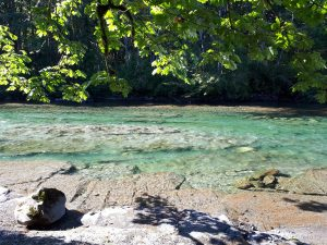 a glacial fed river of pristine blue water and soft bedrock, with leafy green trees leaning into frame, pictured in sunlight