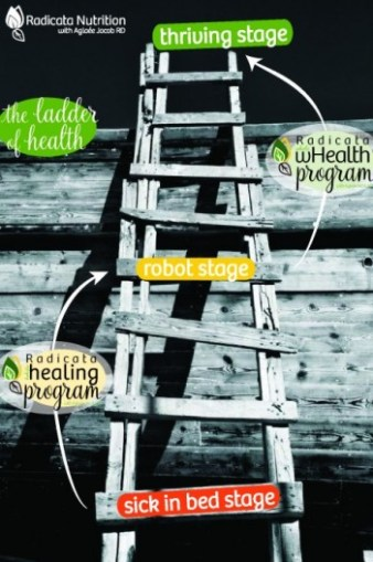 ladder of health-whealth-01