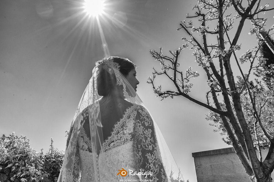 boda en Arroyo de la Encomienda - Jardín de la Abadía