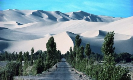 China's Great Green Wall Against Sandstorms
