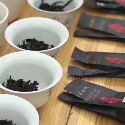 Inside a Tea Competition in Wuyi Shan