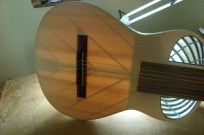 2011 Fusion Guitar - Bracing inspired by Jeremy Clark from 52 Instruments