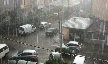 shiu prizreni rrebesh