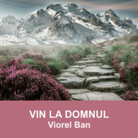 VIN LA DOMNUL   Viorel Ban