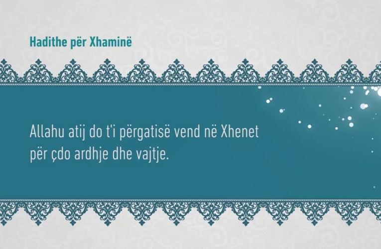 Xhamia 151