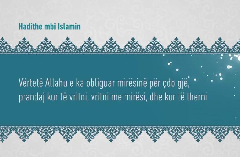 Ihsani 55