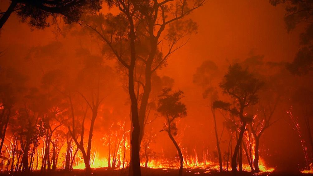 """Burning"", documental de Eva Omer. (Amazon Primer Video)"